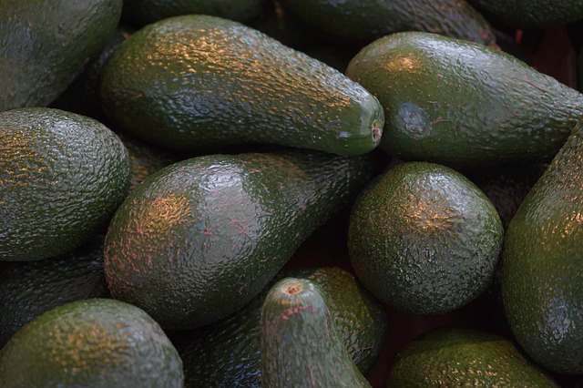 avocados-318198_640