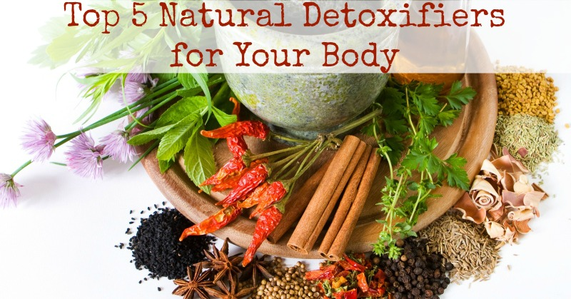 Top 5 Natural Detoxifiers for Your Body