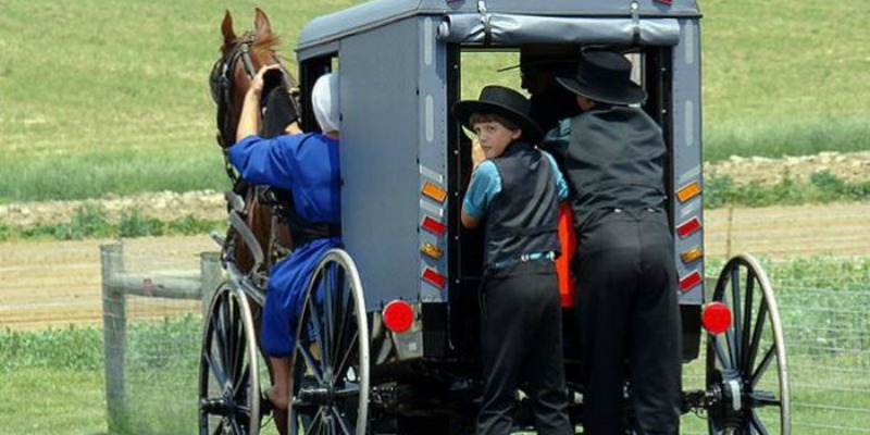 Why the Amish Rarely Get Sick: Things You Can Learn From Them