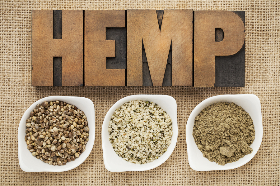 Hemp: The Miracle Superfood You're Not Eating