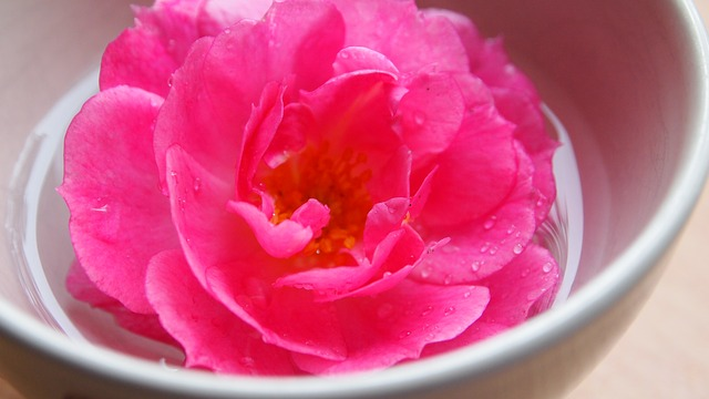 Rosewater Can Cure Dry Skin, Bad Hair And Dark Circles. (and how to make Rosewater)