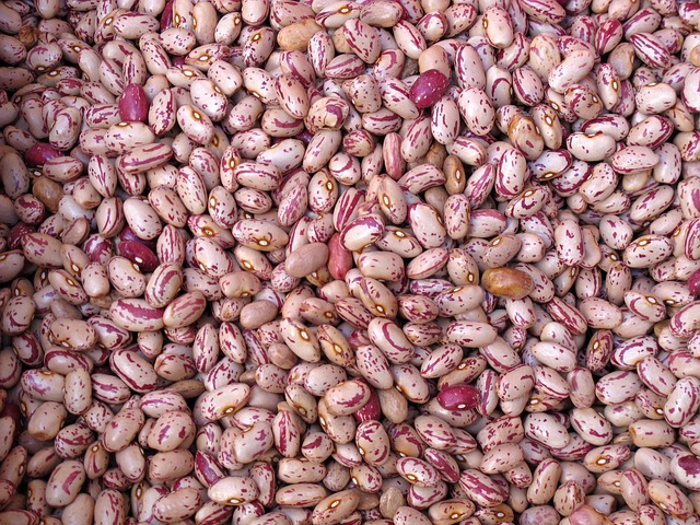 The Real Truth About Beans and Why You Shouldn't Eat Them