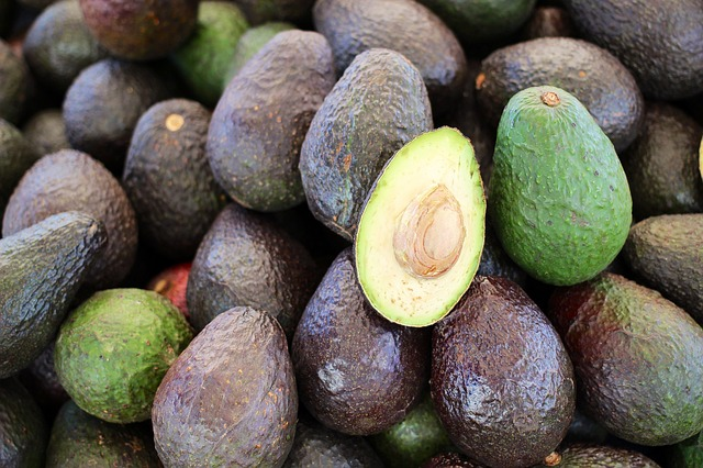 Why You Must Eat One Avocado a Day