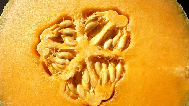 5 Top Reasons to Eat Cantaloupe