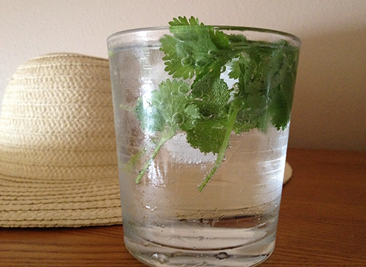 Why I Use Cilantro In My Water Daily