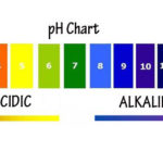 Cancer Cells thrive in an Acidic, Low oxygen, Low pH environment. Here is How To Check Your pH Balance